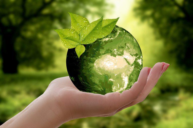 מה הקשר בין פחי מחזור, איכות הסביבה והבריאות שלנו?